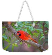 Cardinal Birds Hanging Out On A Tree Weekender Tote Bag
