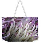 Micronesia, Marine Life Weekender Tote Bag