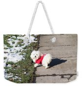 My Small Dog Weekender Tote Bag