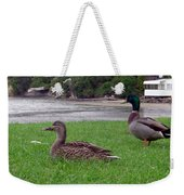 New Zealand - Mallard Ducks On The Grass Weekender Tote Bag