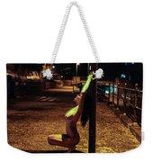 Tasha Holz Weekender Tote Bag