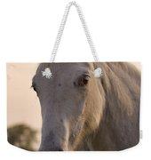 The Horse Portrait Weekender Tote Bag