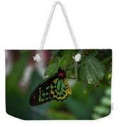 5156- Butterfly Weekender Tote Bag