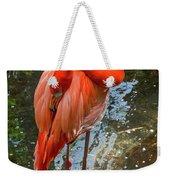 5182- Flamingo Weekender Tote Bag