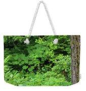 Alaska_00006 Weekender Tote Bag