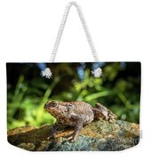 Amphibian, Common British Toad / Frog Weekender Tote Bag