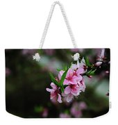 Blossoming Peach Flowers Closeup Weekender Tote Bag