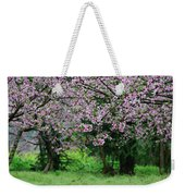 Blossoming Peach Flowers In Spring Weekender Tote Bag
