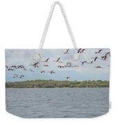 Colombia Sanctuary Of Flamingos Near Riohacha Weekender Tote Bag