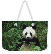 Giant Panda Ailuropoda Melanoleuca Weekender Tote Bag by Cyril Ruoso