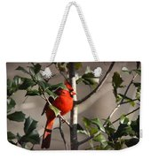 Img_0001 - Northern Cardinal Weekender Tote Bag
