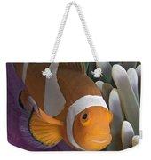 Malaysia, Marine Life Weekender Tote Bag