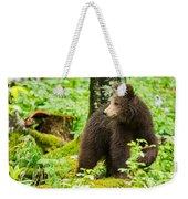 One Year Old Brown Bear In Slovenia Weekender Tote Bag