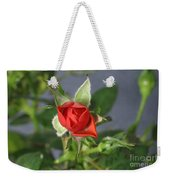 Red Rose Blooming Weekender Tote Bag