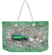 6-spotted Green Tiger Beetle Weekender Tote Bag