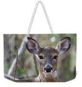 White Tailed Deer Smithtown New York Weekender Tote Bag