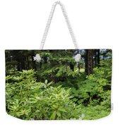 Alaska_00007 Weekender Tote Bag