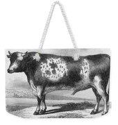 Cattle, 19th Century Weekender Tote Bag