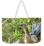 Female Anhinga Weekender Tote Bag