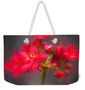 Jatropha Blossoms Painted Weekender Tote Bag
