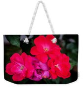 Knockout Roses Painted  Weekender Tote Bag