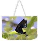 7759 - Butterfly Weekender Tote Bag