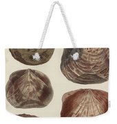 Aquatic Animals - Seafood - Shells - Mussels Weekender Tote Bag