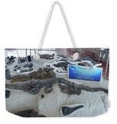 Centro De Investigaciones Paleontologicas Weekender Tote Bag