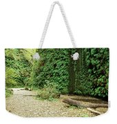 Fern Canyon Weekender Tote Bag