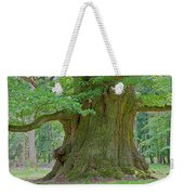 800 Years Old Oak Tree  Weekender Tote Bag by Heiko Koehrer-Wagner