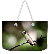 8181-001 - Ruby-throated Hummingbird Weekender Tote Bag