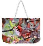 8627-002 - Northern Cardinal Weekender Tote Bag