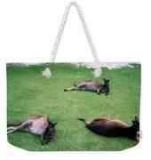 Australian Native Animals Weekender Tote Bag