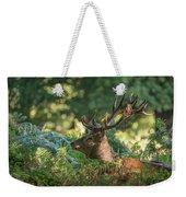 Majestic Powerful Red Deer Stag Cervus Elaphus In Forest Landsca Weekender Tote Bag