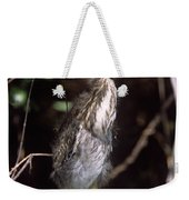 A Baby Green Heron Stretched Out Peering Into The Camera Weekender Tote Bag