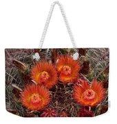 A Barrel Cactus Is Blooming Weekender Tote Bag