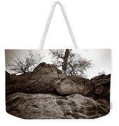 A Barren Perch - Sepia Weekender Tote Bag