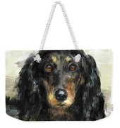 A Beautiful Artistic Painting Of A Dachshund  Weekender Tote Bag