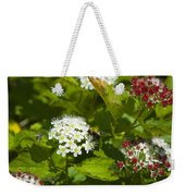 A Bee And A Fly Meet On A Flower Weekender Tote Bag