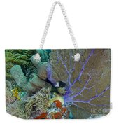 A Bi-color Damselfish Amongst The Coral Weekender Tote Bag