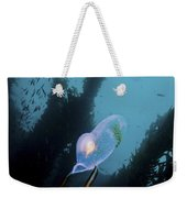 A Bioluminescent Tunicate, Catalina Weekender Tote Bag