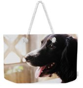 A Black Dog Weekender Tote Bag