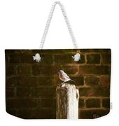 A Bluebird At The Governor's Palace Gardens Weekender Tote Bag