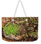A Bowl Of Greens Weekender Tote Bag