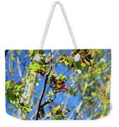 A Branch Standing Out From The Crowd Weekender Tote Bag