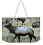 A Bull Elk  Weekender Tote Bag