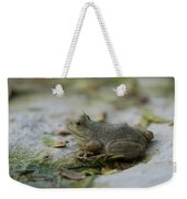 A Bullfrog At The Sunset Zoo Weekender Tote Bag