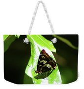 A Butterfly In The Sun  Weekender Tote Bag