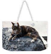 A Cat From Rome Weekender Tote Bag