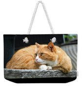 A Cat Named 'kitty' Weekender Tote Bag